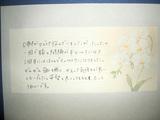 A・I様10代女性東京都新宿区直筆メッセージ